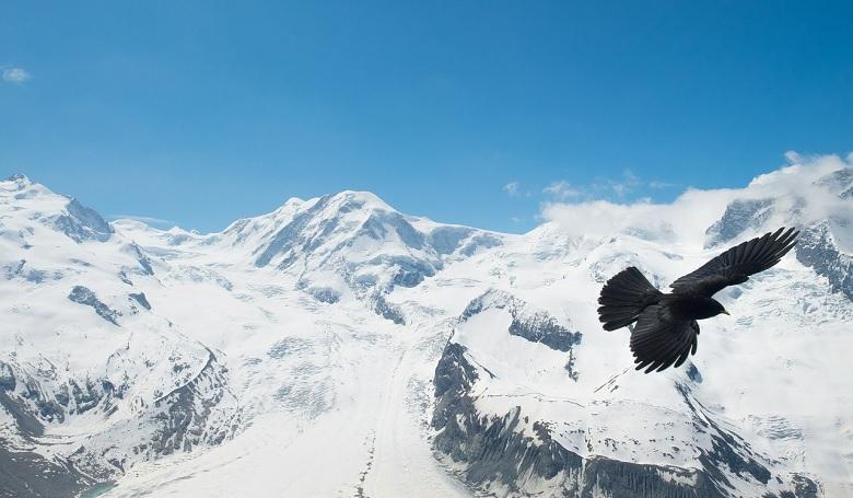 Zermatt w Szwajcarii
